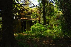the house in the woods by objekt-stock