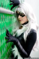 Black Cat - Spiderman -2 by Yukilefay