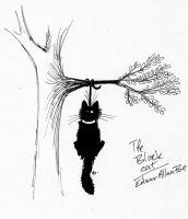 The Black Cat - E.A.Poe by Vlcek
