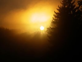 rise and shine by shod