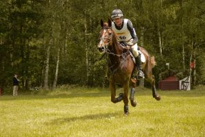 Eventing Stock - Full Speed Gallop 04 by LuDa-Stock