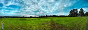 Green Briar Pano HDR by joelht74