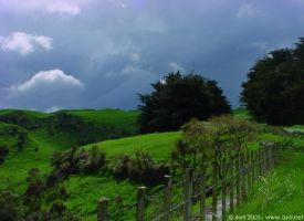 New Zealand spring by Starsong-Studio
