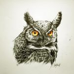 Ballpoint owl by Mishice