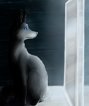 when will my reflection show who i am inside by scrungo
