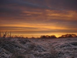 January Sunrise by JohnnySix