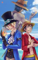 Ace, Luffy, Sabo by TyrineCarver