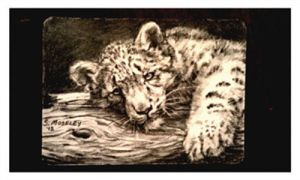 ACEO leopard cub by SuzanneMoseley