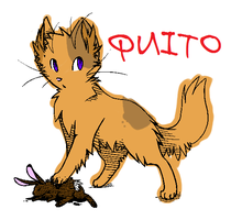 Quito OC by Sterling-Adopts
