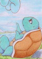 Pokemon Schiggy aka Squirtle by R-a-t-t-a-t-a