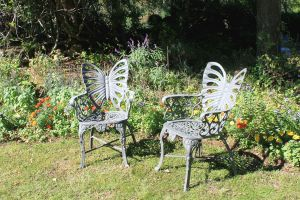 Butterfly Chairs by SalemCatStock