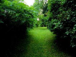 Shaded path by highlyimprobable