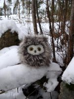 Fuzzy owl in winter wonderland by demiveemon