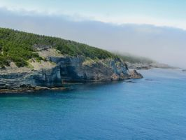 Middle Cove by Lawrenceevoy