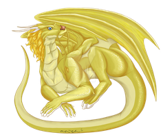 Golden Dragon Commission (Please Full View) by OllyChimera