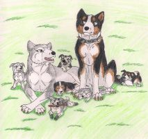 Kage, Yume and pups by Meri-theDog