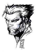 Inks of Silvestri's Wolverine by RPotchak
