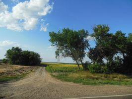 The Nature of Kuban: Another road by Aslehill12