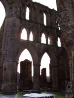 Rievaulx Abbey 004 by jollyjack