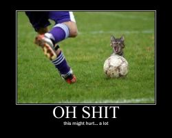 soccer kitty demotivational by Val30fDr3am5