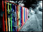 The Colorful Street by phathatha