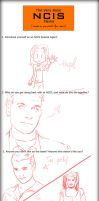 NCIS Meme by Nittletwister