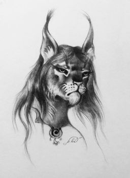 Khajiit sketch by MashkaLord