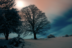 Winter Night V by Levadora