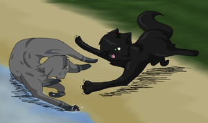 Hollyleaf and Ashfur by Dawnfirelunah