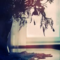 Withering by stargeisha