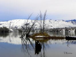 Reflections by TRunna