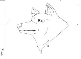 Wolf head Outline by Autobotschic
