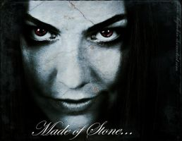 Made of Stone(Evanescence) by Chefinlove