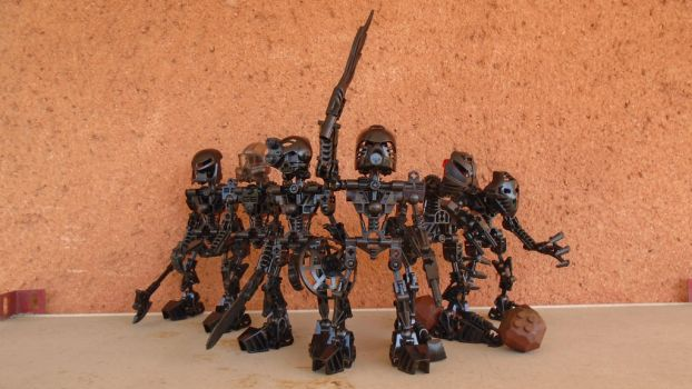Aren't they official ? #11 Shadow Toa by vahki6