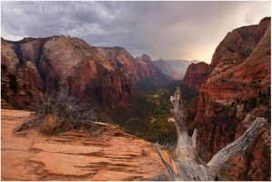 Zion's Grandeur by tourofnature