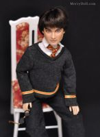 Daniel Radcliffe as young Harry Potter: Tonner dol by mary-vassilieva