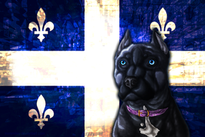 .: Vive le Quebec! :. by mimmiley