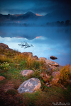 The Foggy Landscape Of An Autumn Morning by kkart