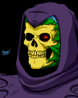 Heads Up 146 - Skeletor by SeanRM