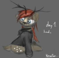 17 days OC mini-challenge 1. Wearing a hoodie by KettuFox