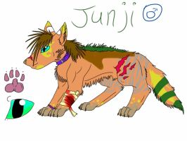Contest Entry: Jinji by silver-moonwolf