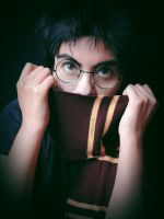 Harry Potter-4 by Qwaseer