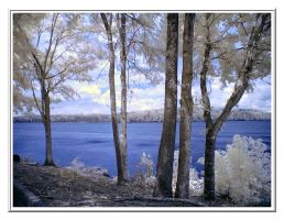 Water, Trees, and Sky 2 by GeneAut