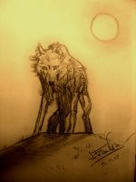 Wolf by sanpay89