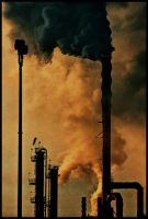 Refinery in Color by Zaitz