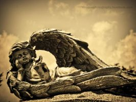 Angel by wroquephotography