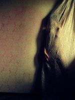 just by pindur
