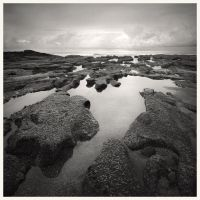 Tidal Pools by samudera