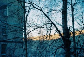 winter day by NPenguin