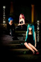 VOCALOIDs - ACUTE by kumakuku